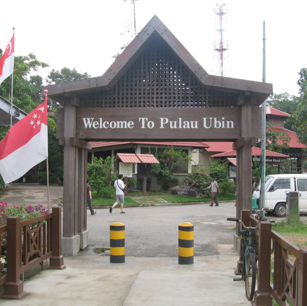 Singapore City Explorers_Pulau Ubin Adventures